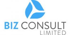 BIZ Consult Limited