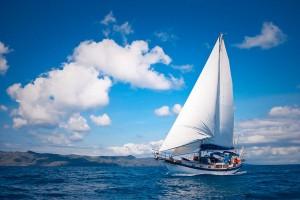 Яхтинг как альтернатива традиционному туризму. Куда пойти на яхте весной и сколько это стоит